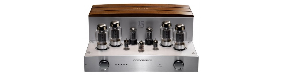 Vacuum Tube Amplifiers