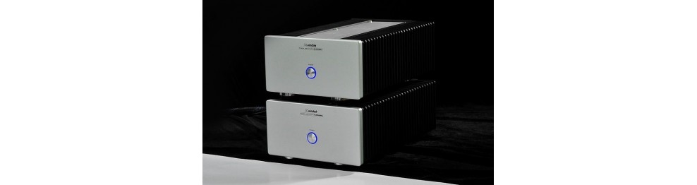 Solid State Mono Amps